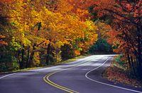 Fall-foliage-01-g