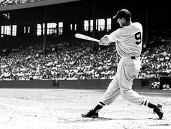 Ted-williams-0209-lg